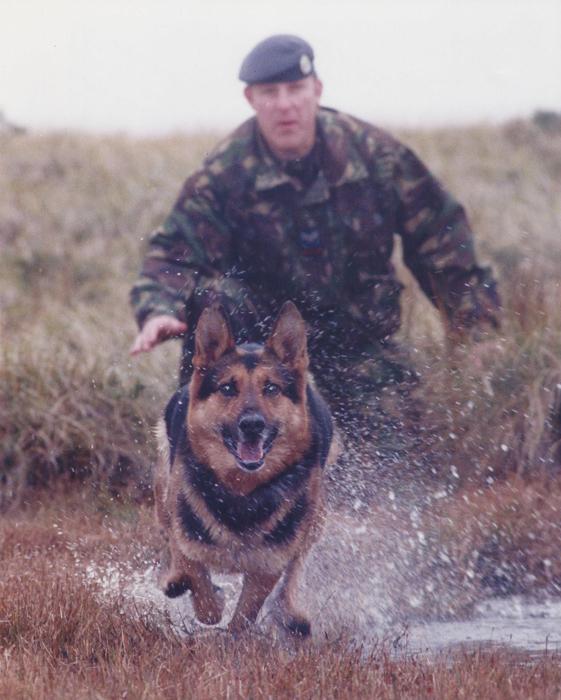 Service Police Dog Tyson