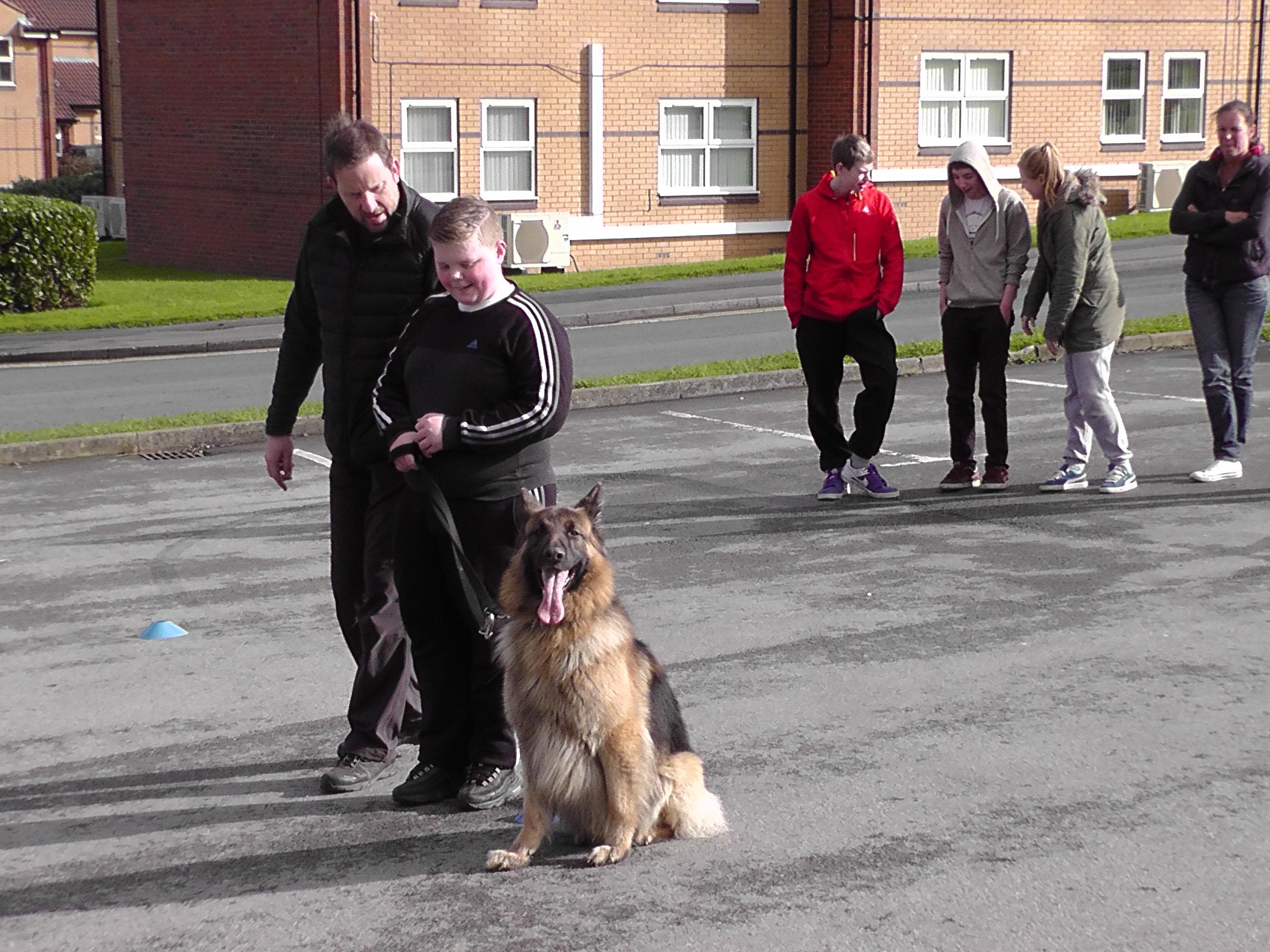 Teaching Responsible Dog Ownership