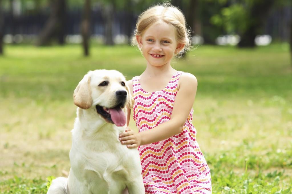 Teach a child how to approach a dog
